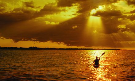Immerse yourself in nature at Bradenton, Florida's kayaking hotspot