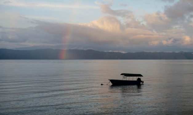 Osa Peninsula uncovered with Pura Aventura